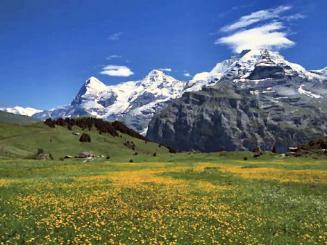 swiss_alps1